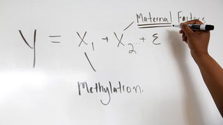 hand writing on white board algebraic formula
